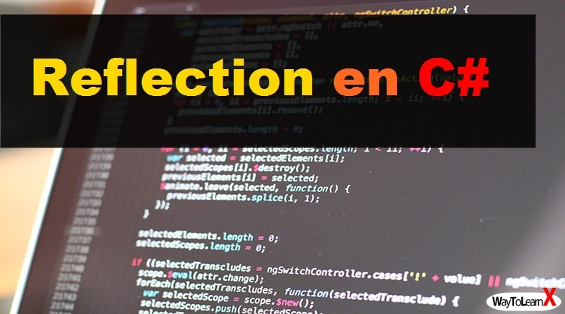 Reflection en C#